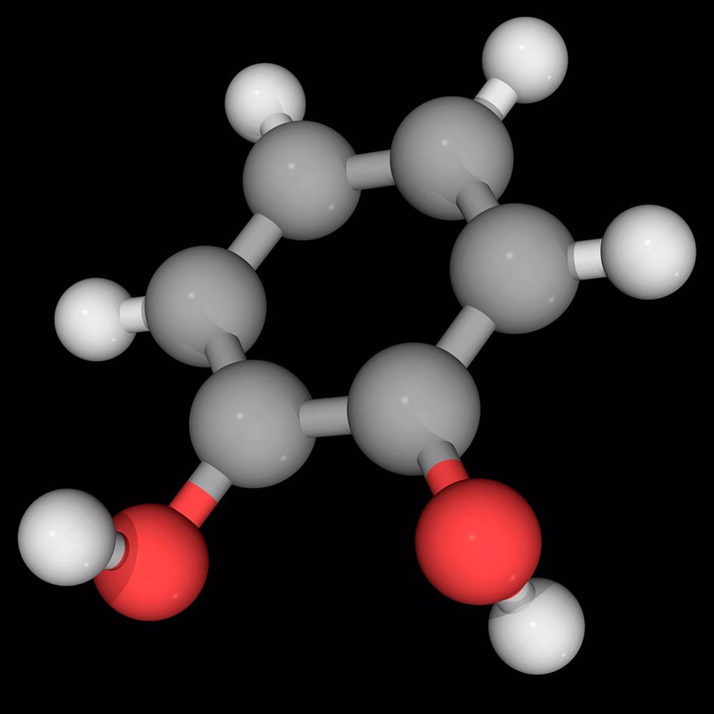 Stock Photo: 4128R-19293 Catechol, molecular model. Orthoisomer of the three isomeric benzenediols. Precursor to pesticides, flavours and fragrances. Atoms are represented as spheres and are colour_coded: carbon grey, hydrogen white and oxygen red.