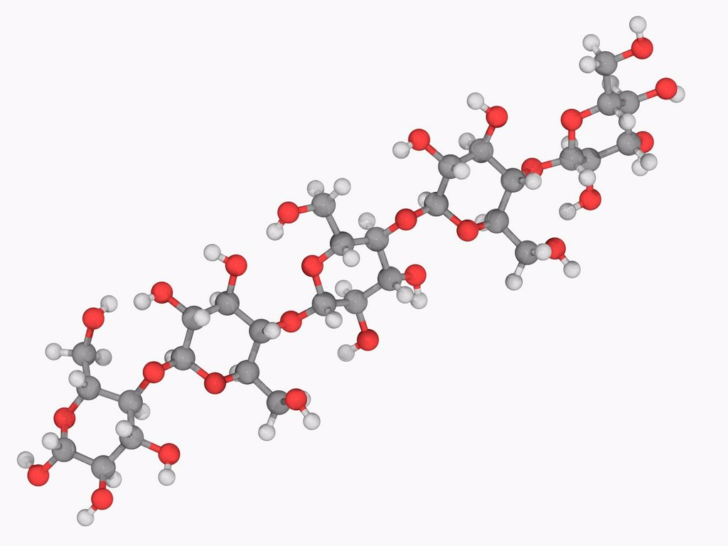 Stock Photo: 4128R-19307 Cellulose, molecular model. Polysaccharide consisting of a linear chain of D_glucose units. Atoms are represented as spheres and are colour_coded: carbon grey, hydrogen white and oxygen red.