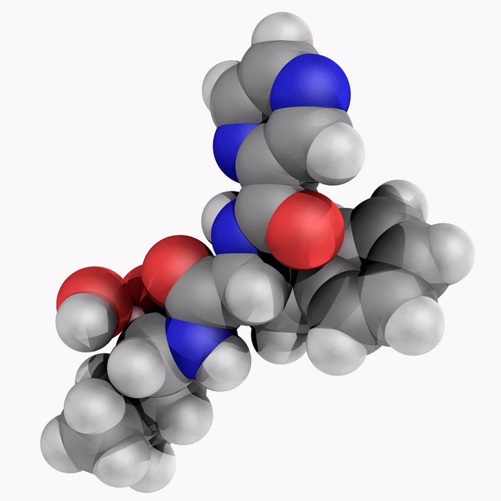 Bortezomib, molecular model. First therapeutic proteasome inhibitor to be tested in humans. U.S._approved for treatment of relapsed multiple myeloma and mantle cell lymphoma. Atoms are represented as spheres and are colour_coded: carbon grey, hydrogen whi : Stock Photo