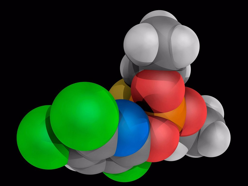 Stock Photo: 4128R-19869 Chlorpyrifos, molecular model. Insecticide for agricultural use. Atoms are represented as spheres and are colour_coded: carbon grey, hydrogen white, nitrogen blue, oxygen red, sulfur yellow, phosphorus orange and chlorine green.