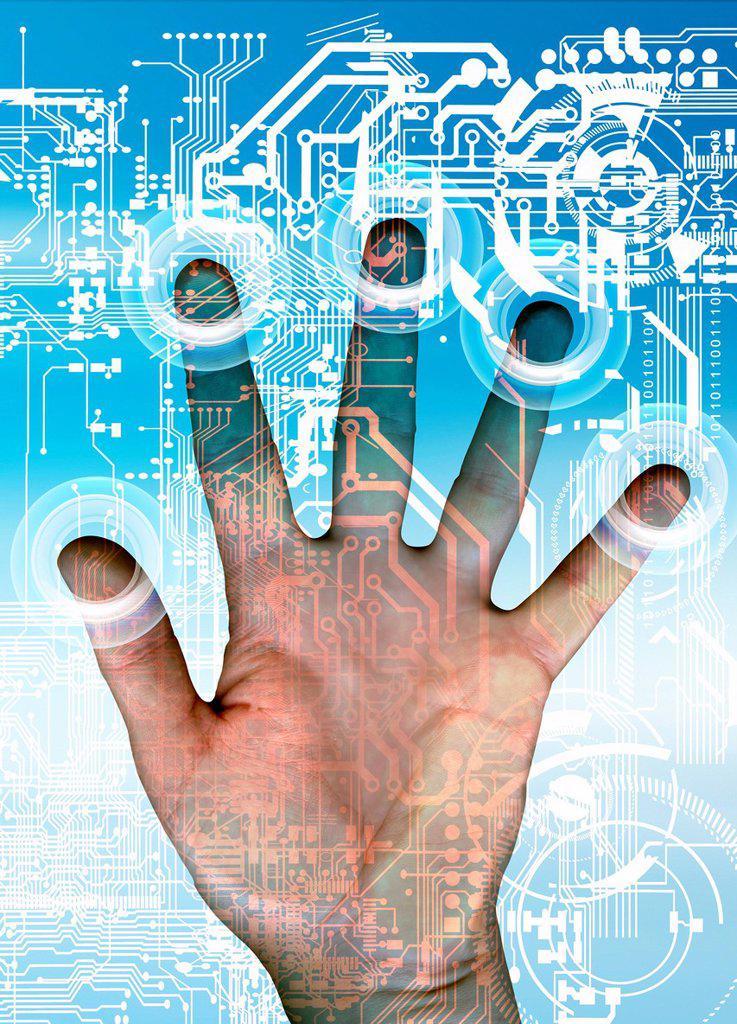Fingerprint scanner, computer artwork. : Stock Photo