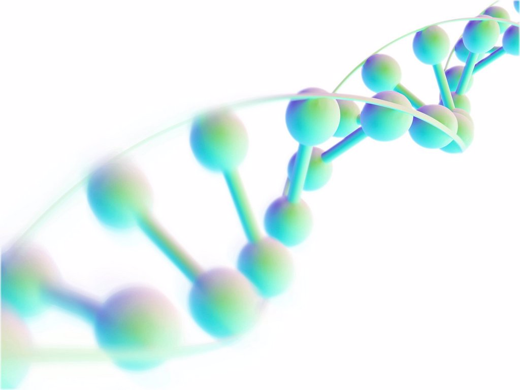 DNA molecule, computer artwork : Stock Photo