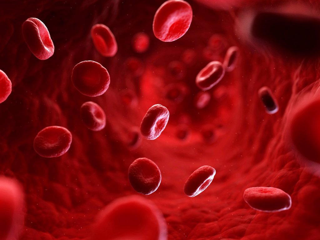 Stock Photo: 4128R-20747 Red blood cells, artwork