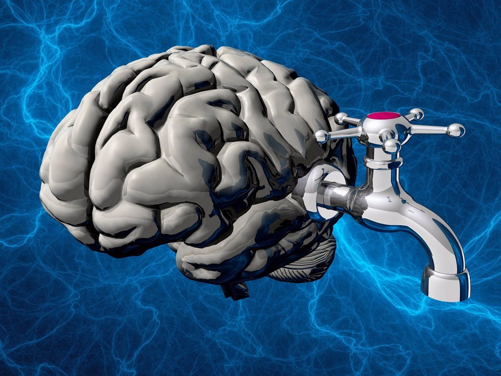 Stock Photo: 4128R-21223 Hydrocephalus, conceptual artwork