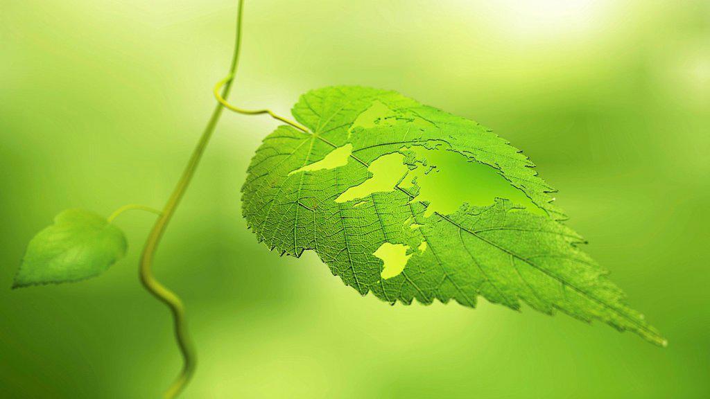 Green planet, conceptual computer artwork. : Stock Photo