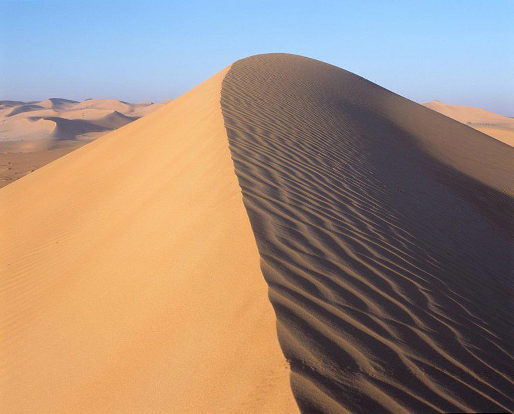 Sand dune crest : Stock Photo