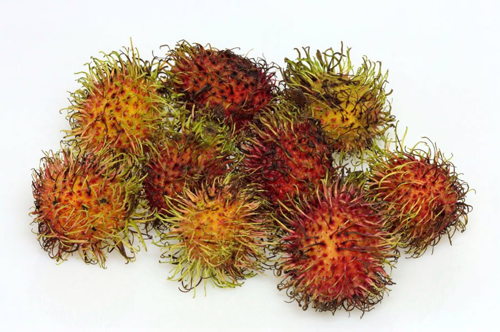 Rambutan Nephelium lappaceum Germany Europe : Stock Photo