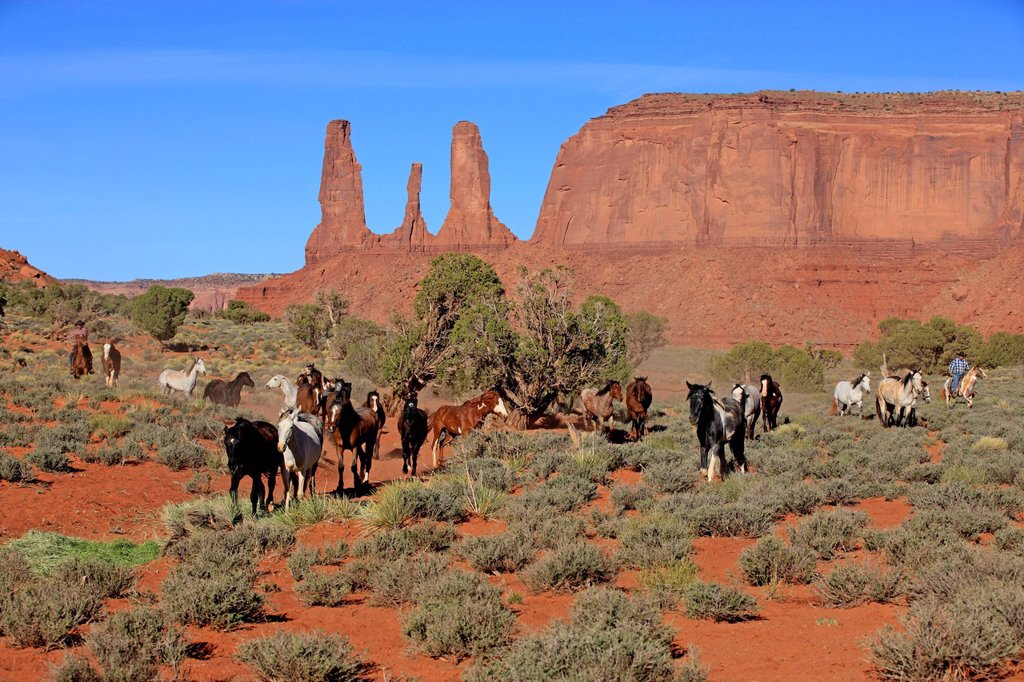Stock Photo: 4133-31230 Navajo Cowboy, Mustang, Equus caballus, Monument Valley, Three Sisters, Utah, USA, Northamerica. Navajo Cowboy, Mustang, Equus caballus, Monument Valley, Three Sisters, Utah, USA, Northamerica, Cowboy and Mustang