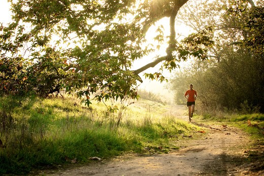 Man running at sunset in a park, San Clemente Canyon, San Diego County, California, USA : Stock Photo