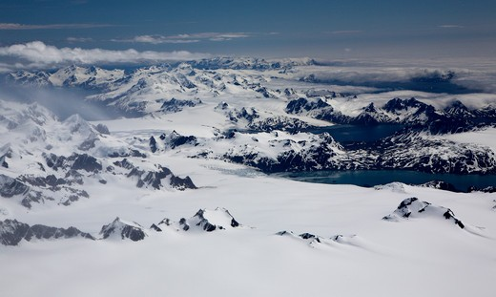Stock Photo: 4141-1434 south georgia, antarctica