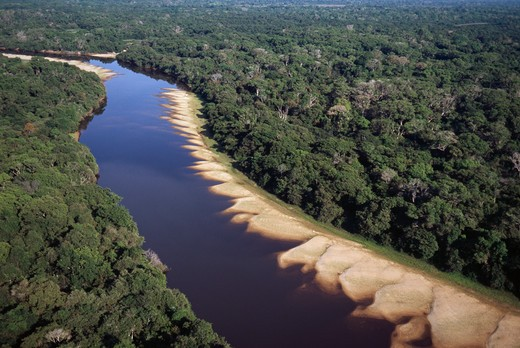 rio negro & forest in spring pantanal, mato grosso do sul, brazil. aerial view. : Stock Photo