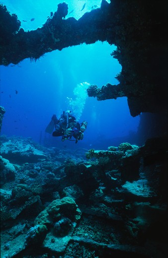 Stock Photo: 4141-17389 diver at wreck of sarah h gulf of suez, red sea, egypt.
