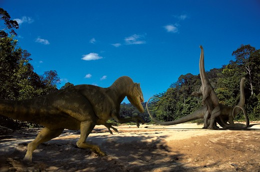 diplodocos & allosaurus digital composite of a pair of diplodocus longus, gigantic herbivorous sauropods from the late jurassic period, facing the attack of a marauding allosaurus fragilis, a carnivorous bipedal theropod from the same time frame, in wh : Stock Photo