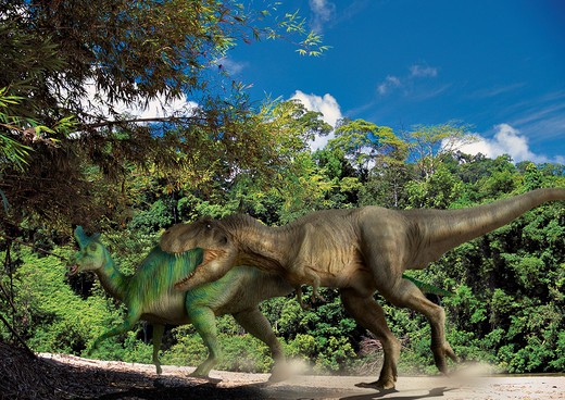 tyrannosaurus & lambeosaurus digital composite of an adult tyrannosaurus rex, a 12.5 meter-long carnivorous theropod dinosaur from the late cretaceous period, attacking a male adult lambeosaurus lambei, a plant-eating duck-billed hadrosaur, in what is  : Stock Photo