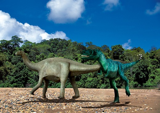yangchuanosaurus & shunosaurus digital composite of an adult male yangchuanosaurus, a large carnivorous saurischian theropod from the mid-jurassic period, attacking a shunosaurus, a sauropod plant-eating dinosaur from the same time frame, in what is to : Stock Photo