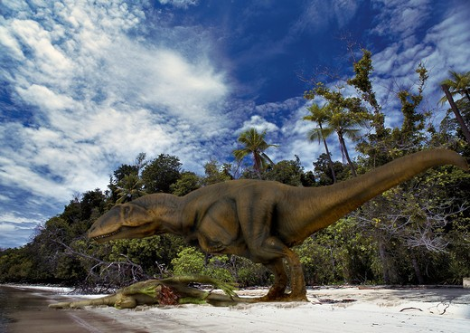 Stock Photo: 4141-23720 digital composite of carcharodontosaurus saharicus, a gigantic meat-eating carnosaur from the cretaceous period from what is today the sahara desert.
