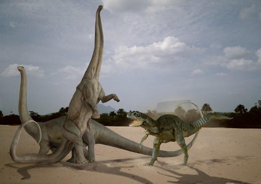 Stock Photo: 4141-23721 digital composite of a pair of diplodocus longus, gigantic herbivorous sauropods from the late jurassic period, facing the attack of a marauding ceratosaurus nasicornis, a carnivorous bipedal theropod from the same time frame, in what is today the state o