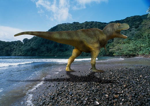 digital composite of megalosaurus bucklandii, a carnivorous theropod from the jurassic period from what is today oxfordshire in england. : Stock Photo