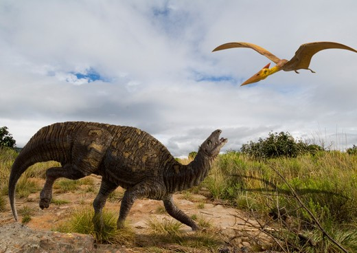 Stock Photo: 4141-23732 digital composite of an adult tenontosaurus tillettorum - an plant-eating hypsilophodontid dinosaur from the early cretaceous period - startled by a passing pterosaur in what is today western north america.