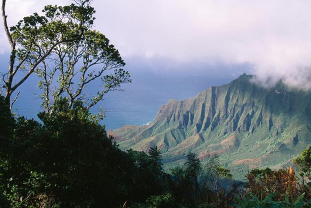 Stock Photo: 4141-2493 fluted cliffs of kalalau valley on na pali coast, kokee state park, kauai, hawaii, usa