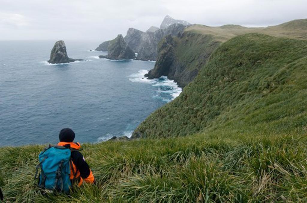 hiker on bird island south georgia  : Stock Photo
