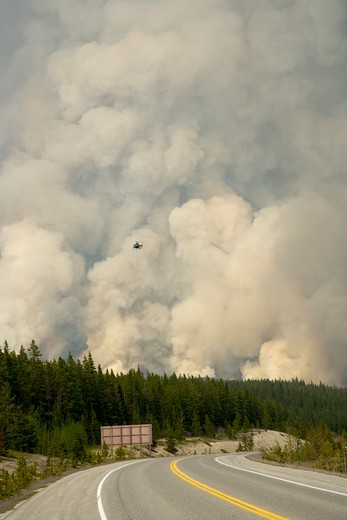 Stock Photo: 4141-38268 forest fire - controlled burn june 2009 with fire setting helicopter, saskatchewan valley, banff national park, alberta, canada