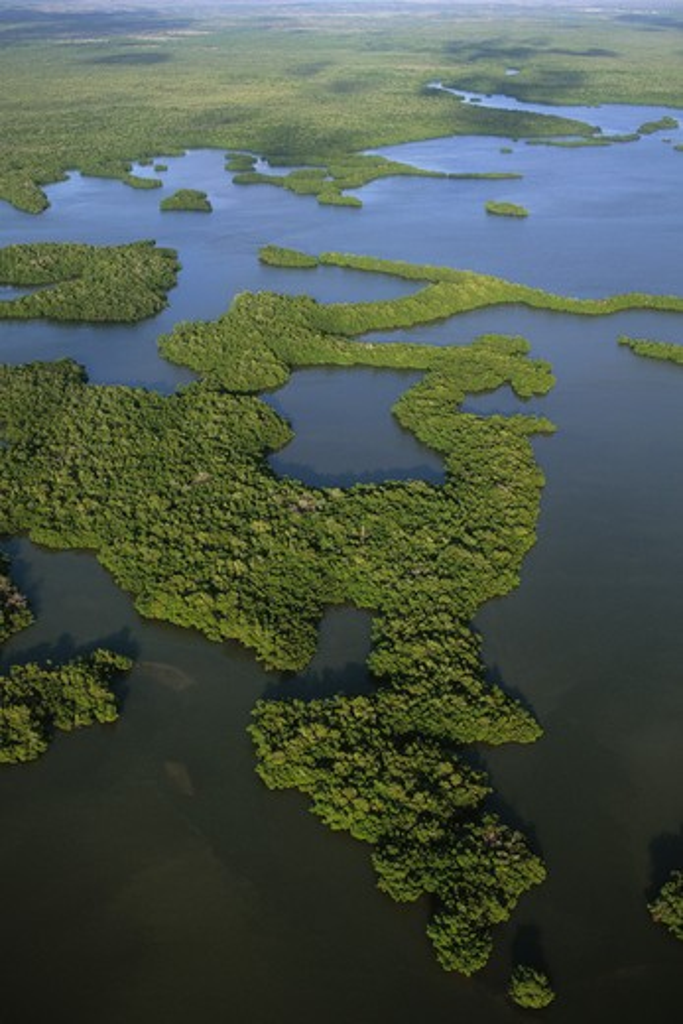 mangrove islands, aerial, ten thousand islands national wildlife refuge, florida, united states : Stock Photo