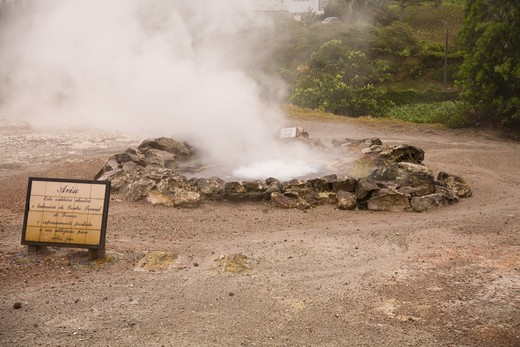 Stock Photo: 4141-44415 fumaroles - boiling water at surface blow hole furnas, san miguel, azores date: 15.10.2008 ref: zb869_126376_0055 compulsory credit: nhpa/photoshot