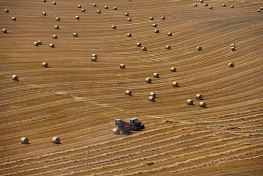 stubble and bales after harvest buckinghamshire august : Stock Photo