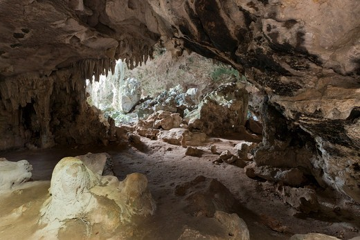San Gabriel Limestone Cave, Los Haitises National Park, Dominican Republic : Stock Photo