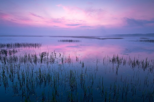 Sunrise At Phantom Lake In Crex Meadows Wildlife Management Area : Stock Photo