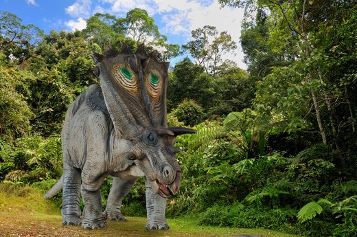 Digital Composite Of A Male Anchiceratops Ornatus, A Large Three-Horned Ceratopsid Dinosaur From The Late Cretaceous, Ambling By A Forest In What Is Today The State Of Alberta In Canada. : Stock Photo