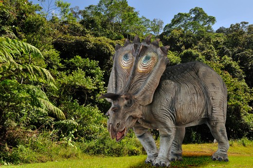 Stock Photo: 4141-57704 Digital Composite Of A Male Anchiceratops Ornatus, A Large Three-Horned Ceratopsid Dinosaur From The Late Cretaceous, Ambling By A Forest In What Is Today The State Of Alberta In Canada.