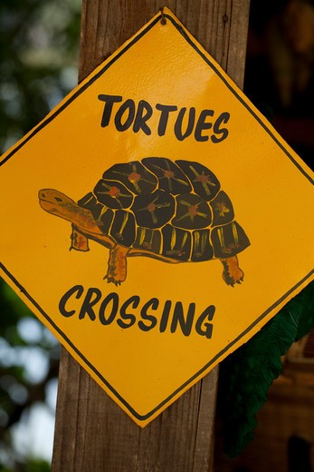 Stock Photo: 4141-59985 Road Sign, Tortues Crossing Or Tortoise Crossing. Illustration Of A Radiated Tortoise (Astrochelys Radiata), By A Local Artist. Madagascar. Tourist Souvenir.
