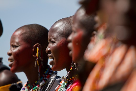 Stock Photo: 4141-62696 Masai Woman Singing During Dancing Ceremony In Upper Mara, Masai Mara Game Reserve, Kenya