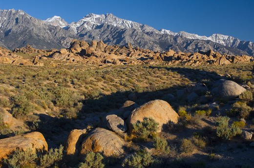 Stock Photo: 4141-6986 alabama hill in early morning near lone pine, california