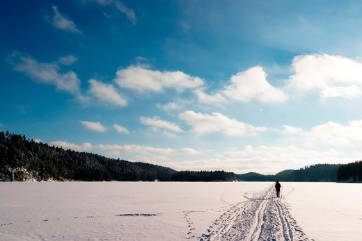 Stock Photo: 4148R-2629 Cross country ski trails on a beautiful blue winters days.