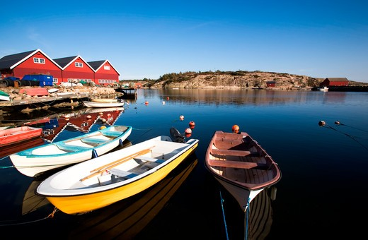 A group of small row boats tied to the dock  : Stock Photo