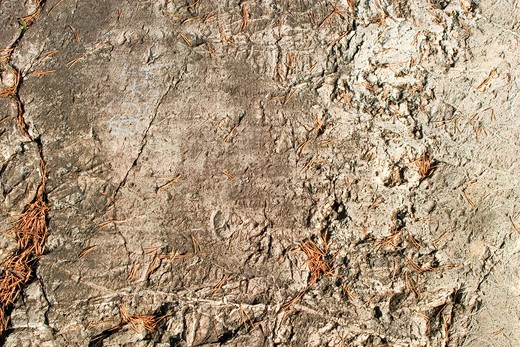 A layerd rock background texture from oslo, norway. : Stock Photo