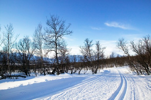 Stock Photo: 4148R-3135 Cross country ski trails in the mountains of Norway.