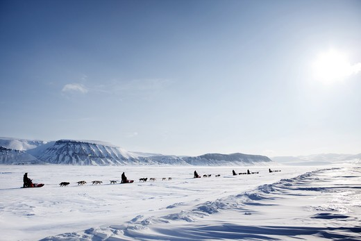 Stock Photo: 4148R-329 A dog sled expedition across a barren winter landscape