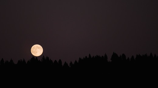 Stock Photo: 4152-110 Full moon in the dark sky, Oregon, USA