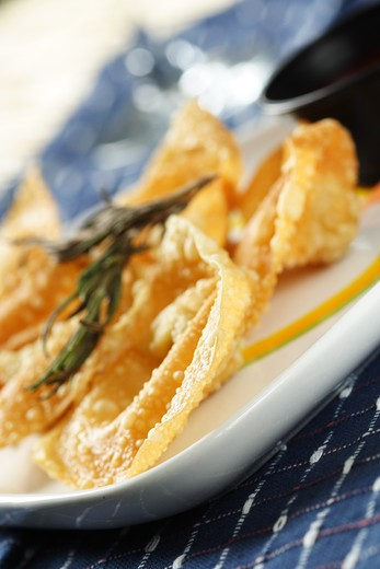 Stock Photo: 4157R-1856 A plate of chinese fried dumplings