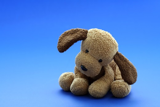 Stock Photo: 4157R-1888 Small cute dog doll/toy