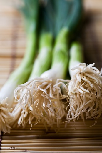 A closeup shot of spring onions or scalllions on bamboo mat : Stock Photo