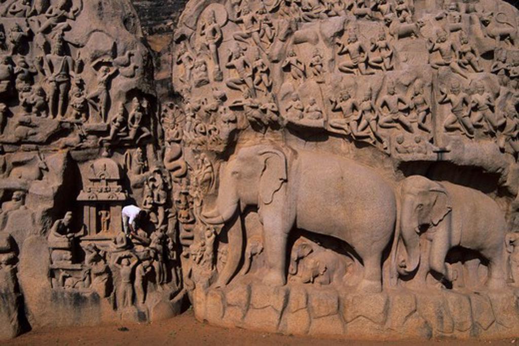 INDIA, NEAR MADRAS (CHENNAI), MAHABALIPURAM, GREAT PENANCE PANEL : Stock Photo