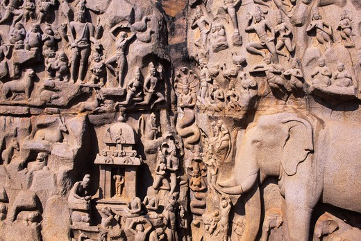 INDIA, NEAR MADRAS (CHENNAI), MAHABALIPURAM, GREAT PENANCE PANEL, DETAIL, ELEPHANTS : Stock Photo