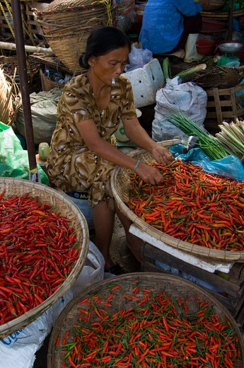 VIETNAM, HUE, MARKET, WOMAN WORKING WITH CHILI PEPPERS : Stock Photo