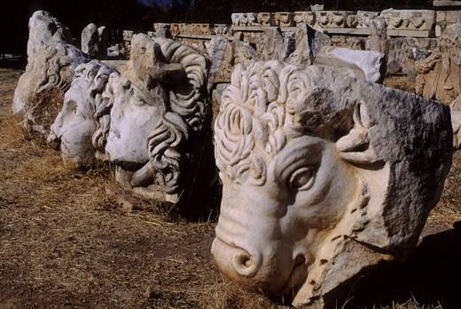 Stock Photo: 4163-13133 TURKEY, APHRODISIAS, MUSEUM, CARVED HEADS