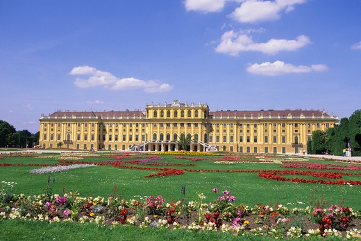 AUSTRIA, VIENNA, PALACE (SCHLOSS) SCHOENBRUNN, FLOWERS IN FOREGROUND : Stock Photo